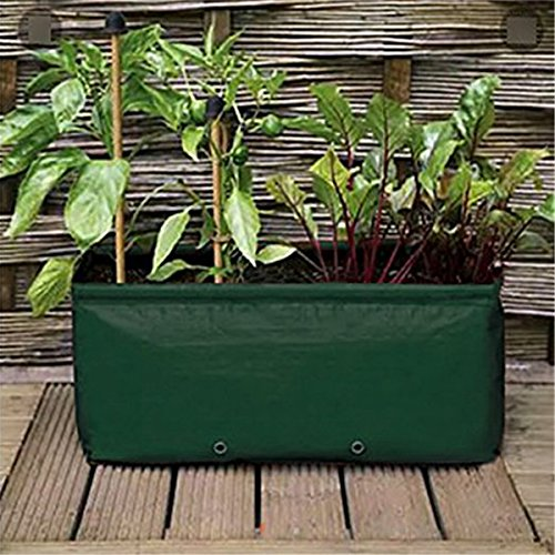 Cheap  Wakaka PE 14 Gallon Raised Garden Bed, Strawberry/Tomato/Potato Planter Bag/Garden Plant Grow..