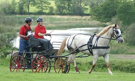 Arnés Zilco tedex de un – de caballos: Amazon.es: Deportes y aire ...