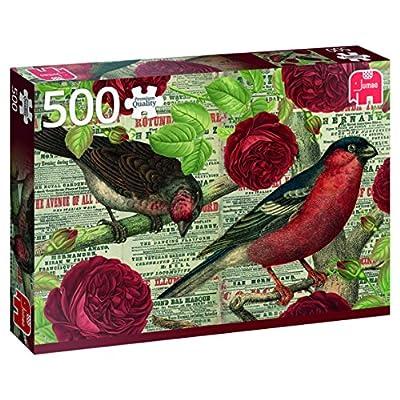 Jumbo 618398 Puzzle Gli Uccelli Amano I Fiori