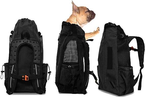 Flkennel Hunderucksack Für Mittelgroße Kleine Hunde Komfortrucksack Tragetasche Oberseite Offen Weiche Seite Atmungsaktives Netz Für Reisen Wanderabenteuer Camping Im Freien Sport Freizeit