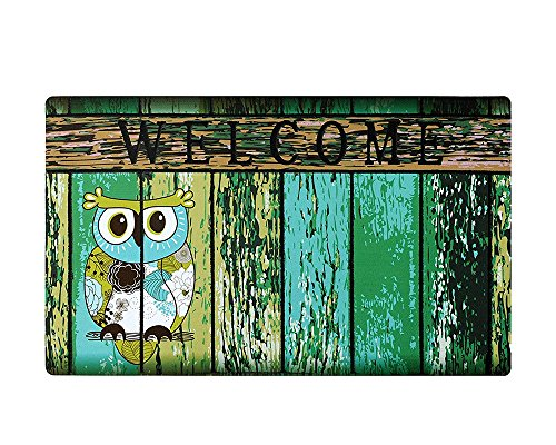 E-view Welcome Mat for Front Door Entrance Way, 29 x 17 inch Decorative Floor Mat Owl Print Doormat with Non Slip Backing (Owls Print-a)