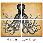 Octopus Art Prints - Set of Four Photos (8x10) Unframed - Makes a Great Gift Under $20 for Beach House Decor 6