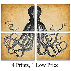Octopus Art Prints – Set of Four Photos (8×10) Unframed – Makes a Great Gift Under $20 for Beach House Decor