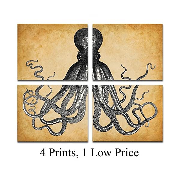 Octopus Art Prints - Set of Four Photos (8x10) Unframed - Makes a Great Gift Under $20 for Beach House Decor 3