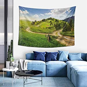 Landscape Cheap tapestries Hillside Meadow Cloudy Sky Fence Near the Cross Road with Fir Trees on Both Sides Bedroom Wall Hanging W35 x L45 inch Green Blue
