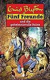 Fünf Freunde und die geheimnisvolle Ruine (Einzelbände, Band 44)