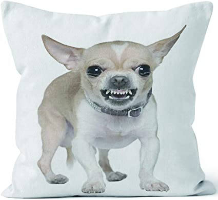 Front View Of Angry Chihuahua Growling Burlap Pillow Home Decor Throw Pillow Cover Hd Printing Cotton Linen Cushion For Couch Sofa Bedroom Livingroom Kitchen Car 40 W By 40 L Amazon Co Uk Kitchen Home