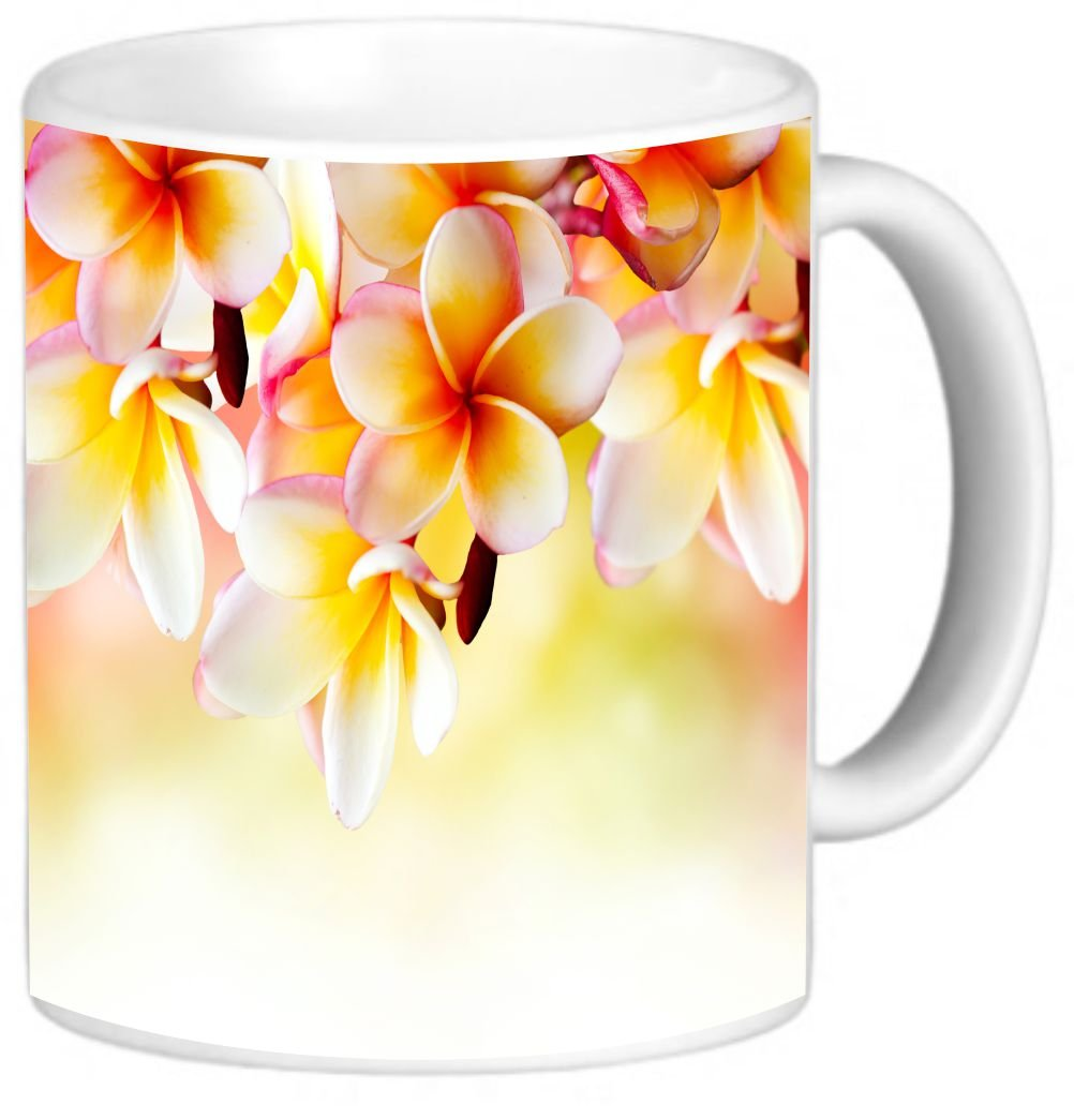 Rikki Knight Frangipani Tropical Spa Flower Design 11 oz Photo Quality Ceramic Coffee Mug Cup- Dishwasher and Microwave Safe