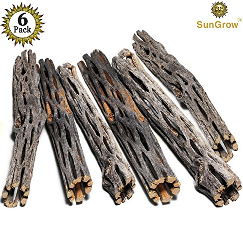 SunGrow Natural Cholla Wood - 6 Pieces, 5 inches Long - Aquarium Decoration & Chew Toys small pets - Artistic Home-Decor - 100% Natural & pet safe - Fertilizer Free - Long Lasting Driftwood by SunGrow