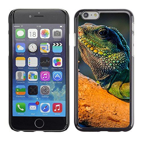"Premio Sottile Slim Cassa Custodia Case Cover Shell // V00003466 iguane // Apple iPhone 6 6S 6G 4.7"""