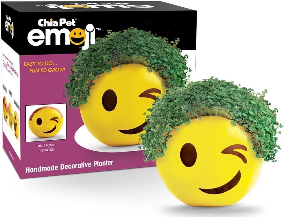 Chia Emoji platillo hecho a mano decorativo maceta: Amazon.es: Jardín