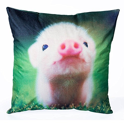 Decorative Pillows baby pig pillow cover 18 x 18 (Linen Personalized Baby Pillow)
