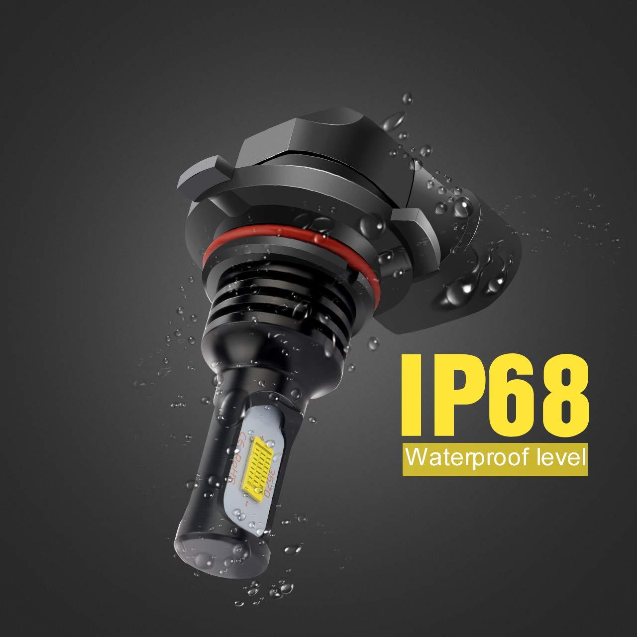 Golden Light 75 W KaTur 9006 HB4-Nebelscheinwerferlampen extrem hell 2400 Lumen max hohe Leistung f/ür Tagfahrlicht 9006, HB4 Golden Tagfahrlicht oder Nebelscheinwerfer