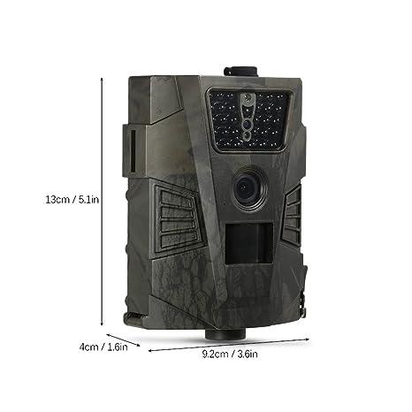 Lixada 8 MP 720p Trail Cámara Caza Cámara de Juego Al Aire Libre de Exploración de Vida Silvestre Cámara Ccon LCD Control Remoto: Amazon.es: Deportes y aire ...