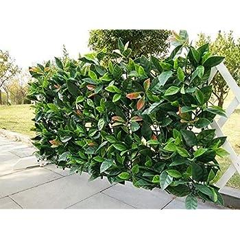 Amazon.com: Artificial Hedge Plant Privacy Fence Screen