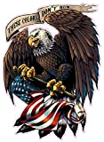 run window decal - American Eagle with Flag These Colors Don't Run Large 12