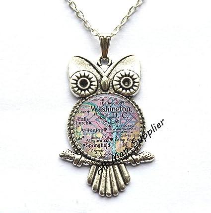 Amazon.com : AllMapsupplier Charming Owl Necklace District ...