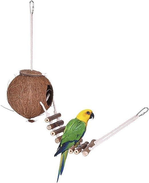 Yunnyp Nido de Pájaro de Concha de Coco Loro Casa de Pájaros con Escalera Nido de Pájaro de Concha de Coco Juguete Colgante de Jaula de Pájaros: Amazon.es: Productos para mascotas
