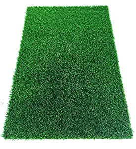 AllGreen Pawlow Artificial Grass Pet Rug Training Potty Pad