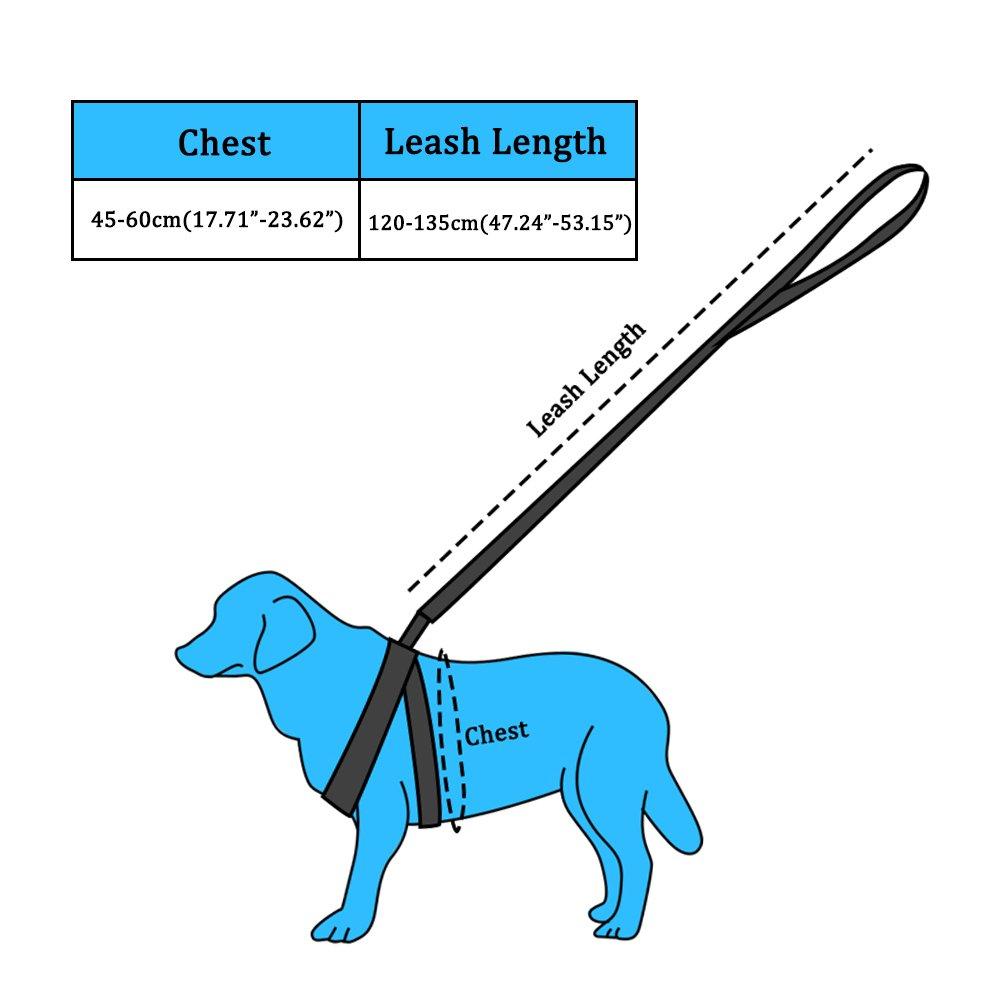 SW Imbracatura Cane Regolabile e Durevole, Step-in-Imbracatura in Nylon per Animali, Imbracatura per Cani Taglia Piccola/Media e Gatti, Adatto per Corsa/Camminata/Allenamento, Rosa