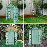 Greenhouse,Indoor and Outdoor Greenhouse,Window and Anchors Include,Grow Plants Seedlings Herbs or