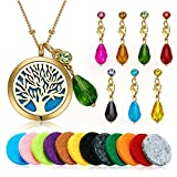 vcmart Gold Aromatherapy Essential Oil Diffuser Pendant Locket Necklace, 24''