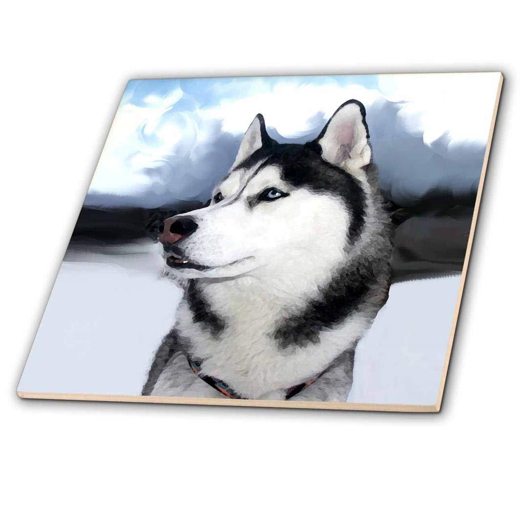12 3dRose ct/_4438/_4 Siberian Husky Ceramic Tile