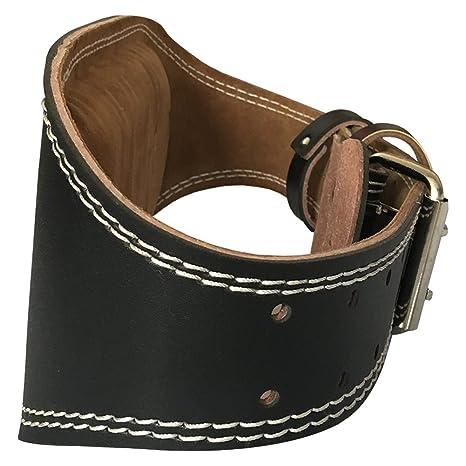 Amazon.com: Cinturón de gimnasio, protección lumbar para ...