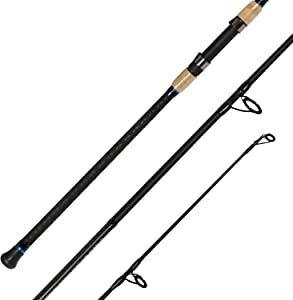 Fiblink 2-Piece Surf Spinning Fishing Rod Carbon Fiber Travel Fishing Rod(9-Feet & 10-Feet & 11-Feet & 12-Feet & 13-Feet)