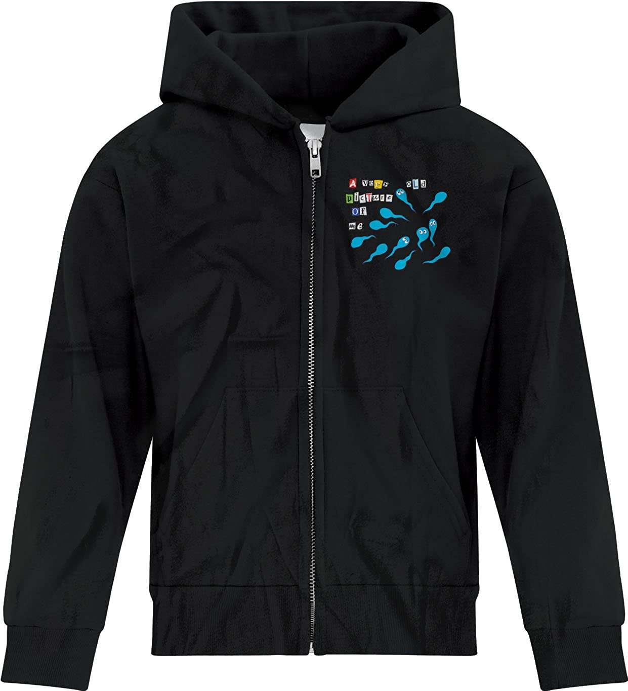 BSW Youth Boys A Very Old Picture of Me Birth Sperm Zip Hoodie