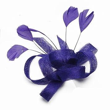 035c2c131223e Eeayyygch Sombrero - señoras Tocado de otoño e Invierno Plumas Hechas a  Mano Lino de la