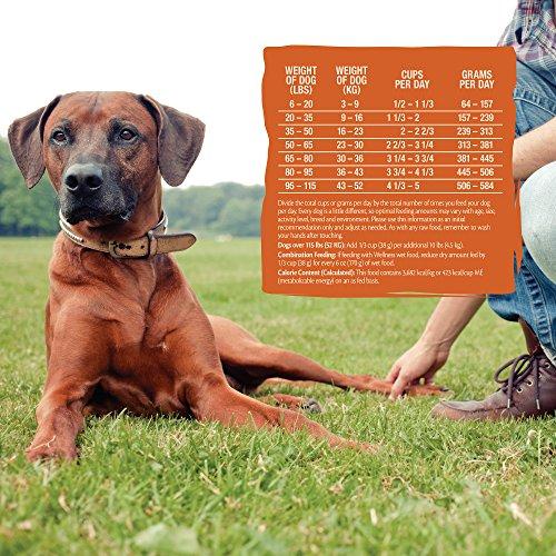 Wellness Core Rawrev Natural Grain Free Dry Dog Food, Original Turkey & Chicken With Freeze Dried Turkey, 20-Pound Bag by Wellness Natural Pet Food (Image #6)
