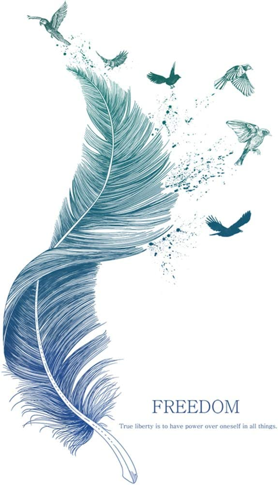M ACHOOSE Wall Decal Blue Feathers and Birds Large Wall Sticker Peel and Stick Removable Wall Art Paper Mural Wall Stickers Wall Decals Home DéCor for Living Room Bedroom (Blue A)