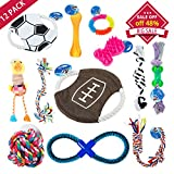 Dog Toys 12 Pack Gift Set - Interactive and Chewing Dog Toys for Medium to Small Pet Teething Toys