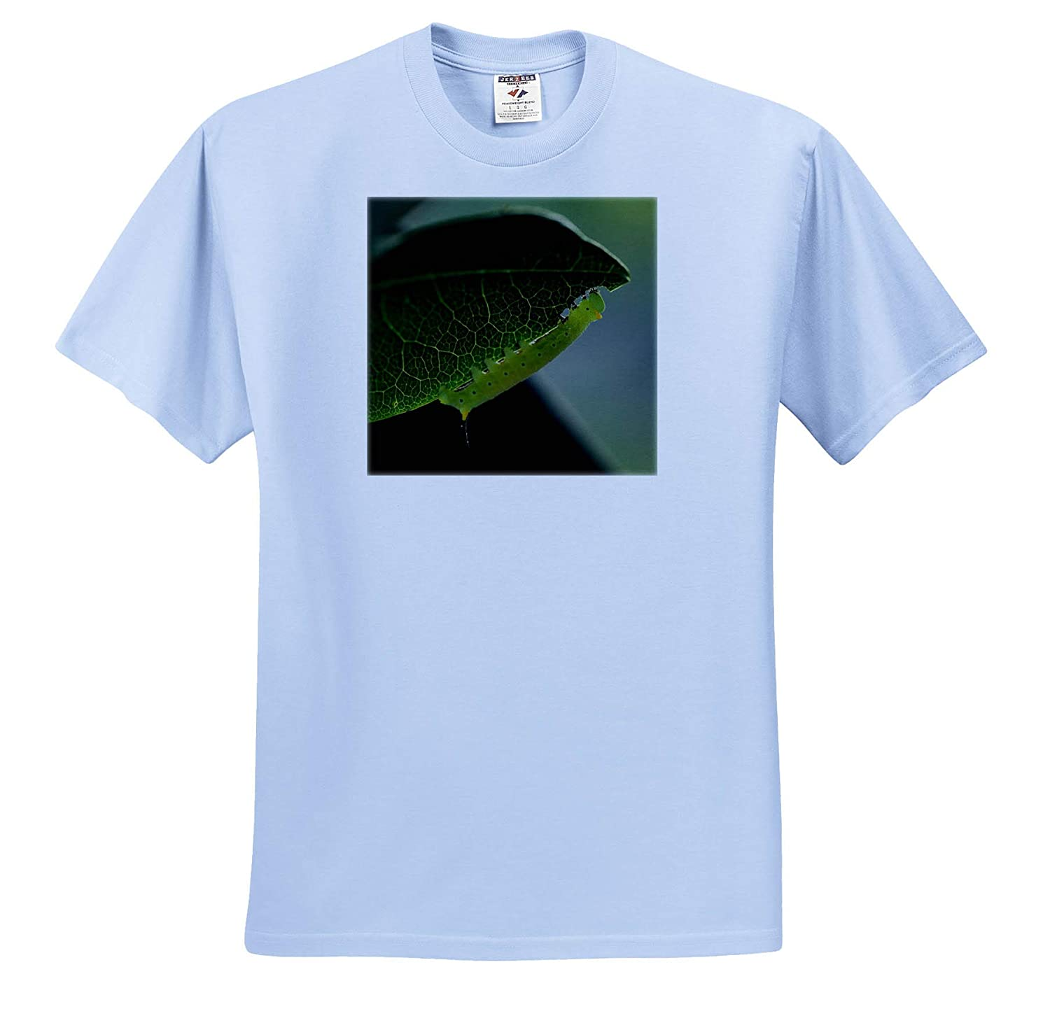 Macro Photograph of a Plump Snowberry Clearwing Caterpillar 3dRose Stamp City Insect ts/_315584 - Adult T-Shirt XL