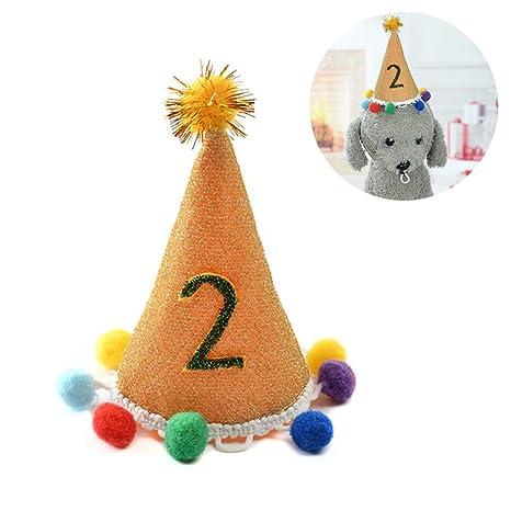 Legendog Mascota Cumpleaños Sombrero Pom Pom Decoración ...