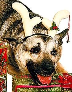 Christmas Rudolf Costume Reindeer Antlers For Pet Dog