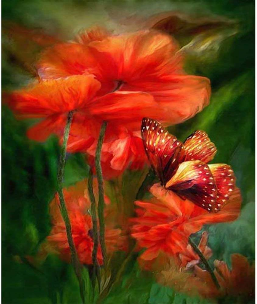 Diy Full Area Round 5D Diamond Painting Red Poppy Flower,Handmade Paste Painting Resin Kit Home D¨¦cor Wall Decoration (19.7X25.6Inch)