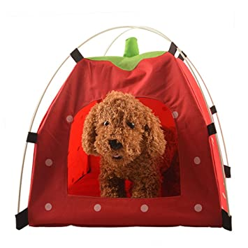 BalataHome Portable Pet Tents Removable Polka Dots Cat Cave Doggie House Pets Shelter Bed Outdoor Pop  sc 1 st  Amazon.com & Amazon.com : BalataHome Portable Pet Tents Removable Polka Dots ...