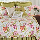 Color Blooms Quilt, Multi, King Quilt