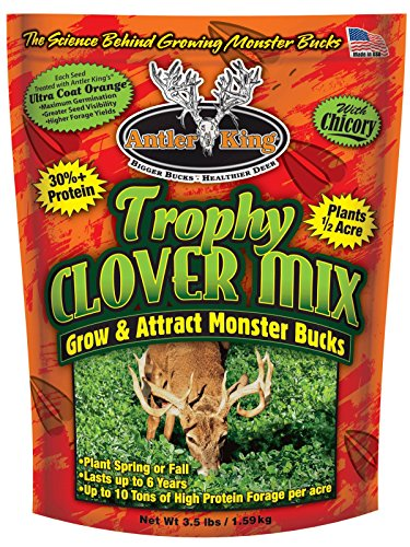Food Plant Plots (Antler King Trophy Clover Mix)
