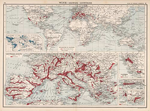 (Map Poster - Wine - Growing Countries. - 24