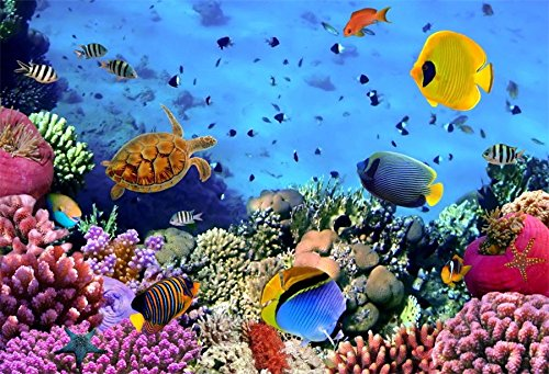 CSFOTO 6x4ft Background for Underwater World Marine Organism Photography Backdrop Marine Museum Starfish Coral Sea Turtle Ocean Swiming Diving Holiday Vacation Photo Studio Props Polyester Wallpaper
