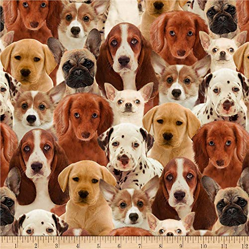 Windham Fabrics One of A Kind Puppies Multi Fabric by The Yard