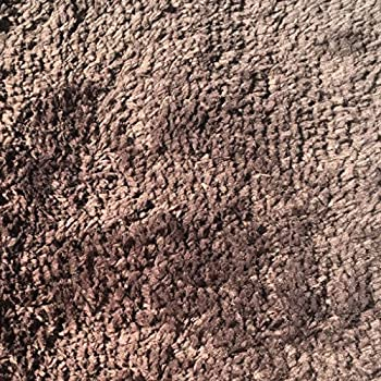 Mohawk Home Cut To Fit Royal Velvet Plush Bath Carpet, Walnut, 6 By 10 Feet