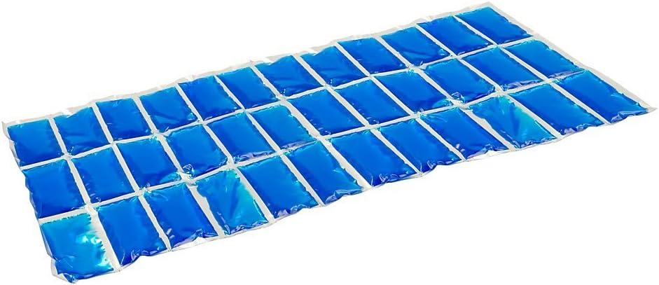 Campingaz Kühlakku Flexi Freez Pack Größe L - Accesorio de Nevera