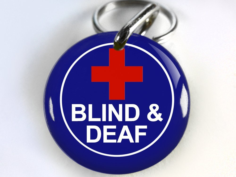 Dog ID Tag Pet id tags Special Needs Unique pet tags Deaf and Blind DBL (Small 1'')
