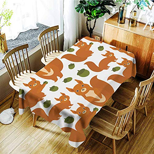 AGONIU Fashions Rectangular Table Cloth,Seamless Pattern Set of Funny red Squirrels with Fluffy Tail with Acorn Isolated on White Background Vector,Dinner Picnic Table Cloth Home Decoration,W50x80L
