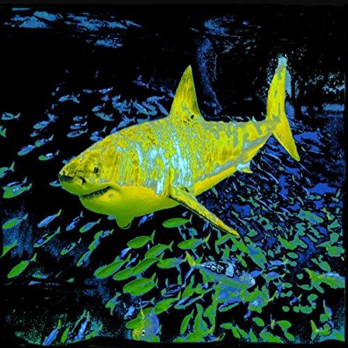 The Yellow Shark (Shark Yellow)