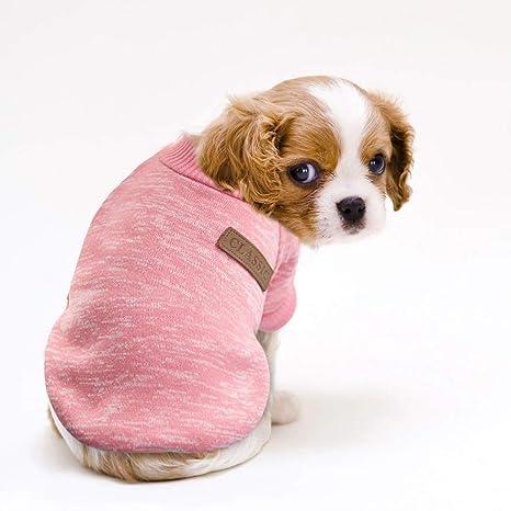 Doggie Estilo Perro de Mascota Cachorro Store Rosa Classic Casual ...